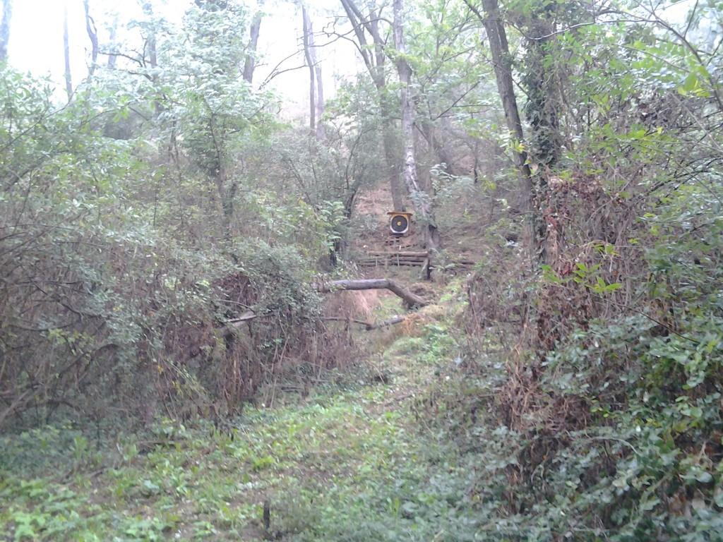 Pas de tir 6 du terrain des Etroits (20 oct 2012)